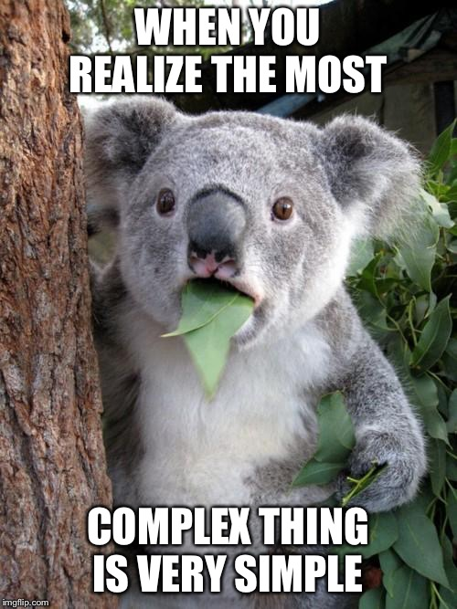 Surprised Koala Meme | WHEN YOU REALIZE THE MOST COMPLEX THING IS VERY SIMPLE | image tagged in memes,surprised koala | made w/ Imgflip meme maker