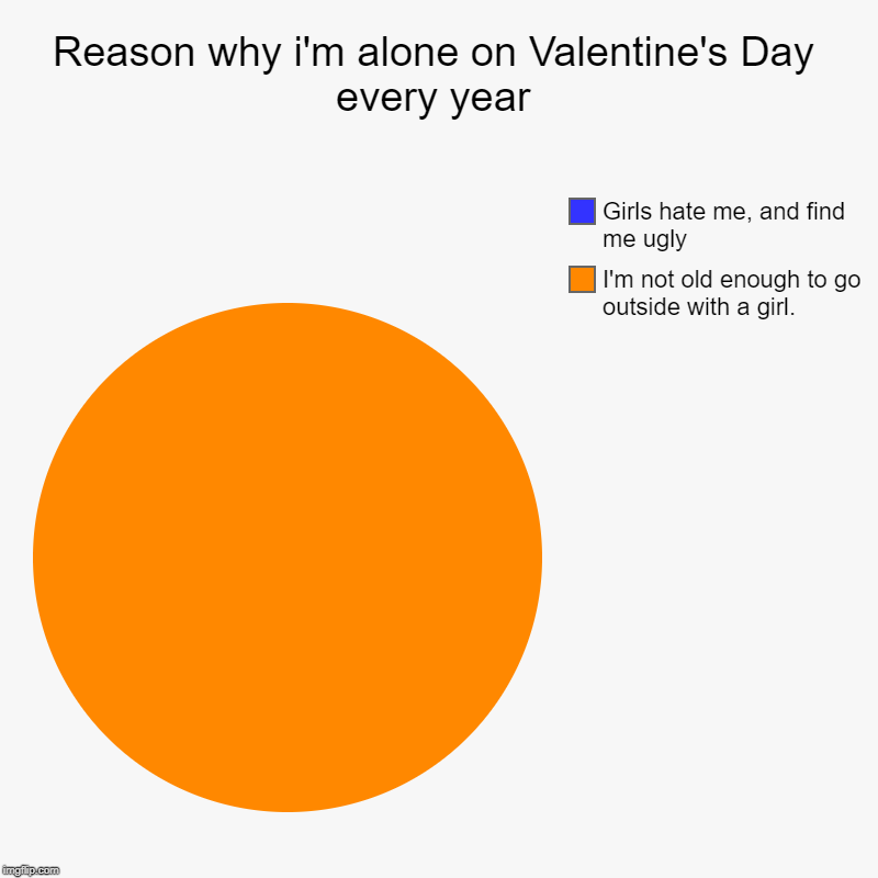 Reason why i'm alone on Valentine's Day every year | I'm not old enough to go outside with a girl., Girls hate me, and find me ugly | image tagged in charts,pie charts | made w/ Imgflip chart maker