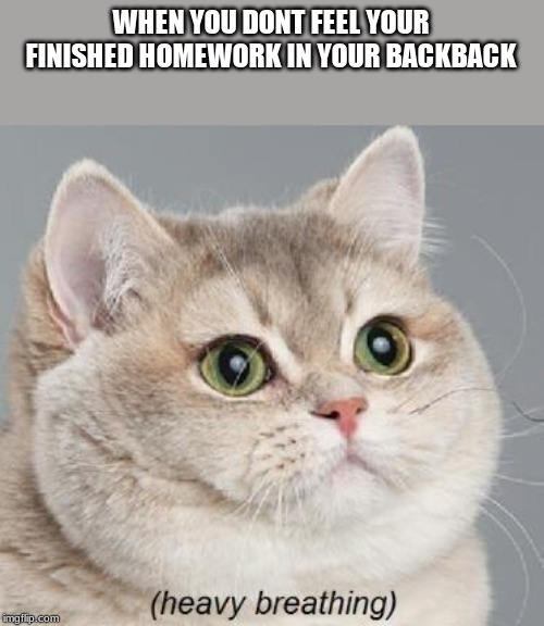 Heavy Breathing Cat | WHEN YOU DONT FEEL YOUR FINISHED HOMEWORK IN YOUR BACKBACK | image tagged in memes,heavy breathing cat | made w/ Imgflip meme maker