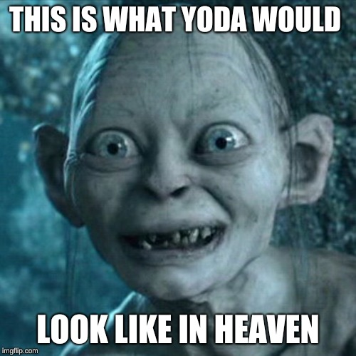 Gollum Meme | THIS IS WHAT YODA WOULD LOOK LIKE IN HEAVEN | image tagged in memes,gollum | made w/ Imgflip meme maker