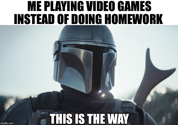 This Is The Way | ME PLAYING VIDEO GAMES INSTEAD OF DOING HOMEWORK THIS IS THE WAY | image tagged in the mandalorian,memes | made w/ Imgflip meme maker