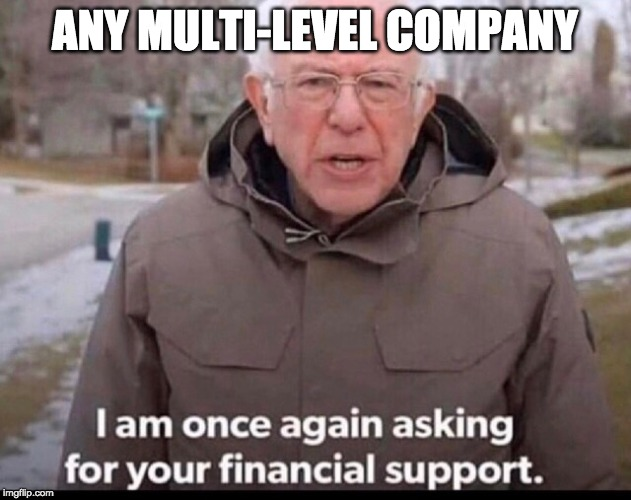 bernie sanders financial support | ANY MULTI-LEVEL COMPANY | image tagged in bernie sanders financial support | made w/ Imgflip meme maker