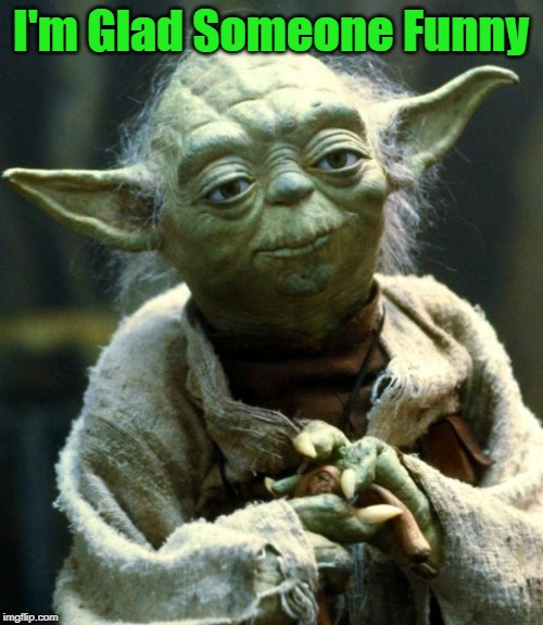 I'm Glad Someone Funny | image tagged in memes,star wars yoda | made w/ Imgflip meme maker