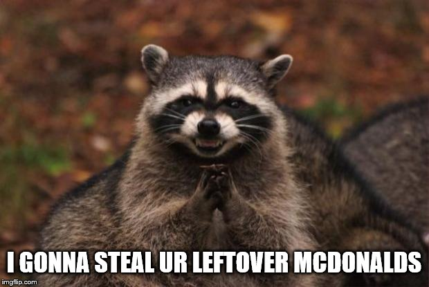 evil genius racoon | I GONNA STEAL UR LEFTOVER MCDONALDS | image tagged in evil genius racoon | made w/ Imgflip meme maker