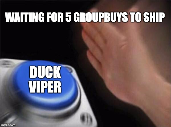 Blank Nut Button Meme |  WAITING FOR 5 GROUPBUYS TO SHIP; DUCK VIPER | image tagged in memes,blank nut button | made w/ Imgflip meme maker