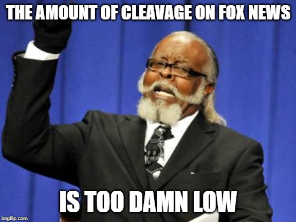 Too Damn High Meme | THE AMOUNT OF CLEAVAGE ON FOX NEWS IS TOO DAMN LOW | image tagged in memes,too damn high | made w/ Imgflip meme maker