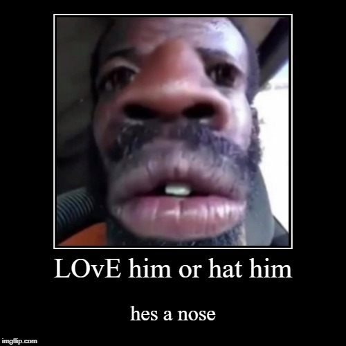LOvE him or hat him | hes a nose | image tagged in funny,demotivationals | made w/ Imgflip demotivational maker