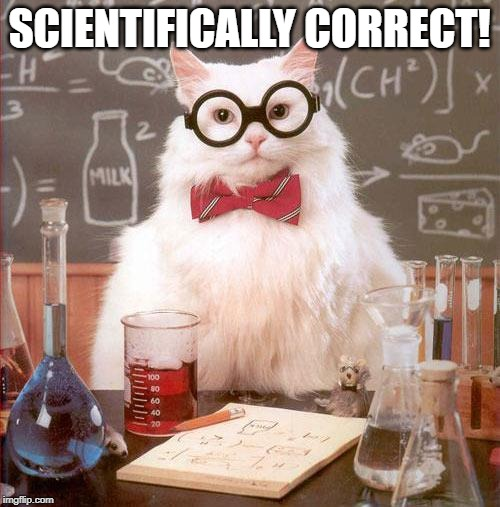 Science Cat | SCIENTIFICALLY CORRECT! | image tagged in science cat | made w/ Imgflip meme maker