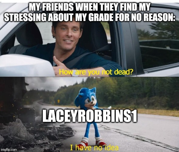 Basically Me And My Friends In A Nutshell When It Comes To Grades | MY FRIENDS WHEN THEY FIND MY STRESSING ABOUT MY GRADE FOR NO REASON: LACEYROBBINS1 | image tagged in sonic how are you not dead | made w/ Imgflip meme maker