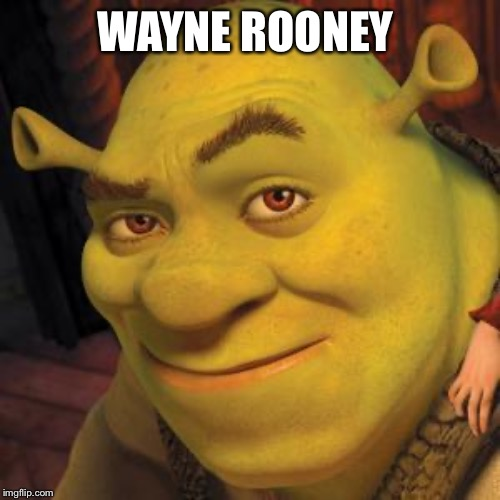 Shrek Sexy Face | WAYNE ROONEY | image tagged in shrek sexy face | made w/ Imgflip meme maker