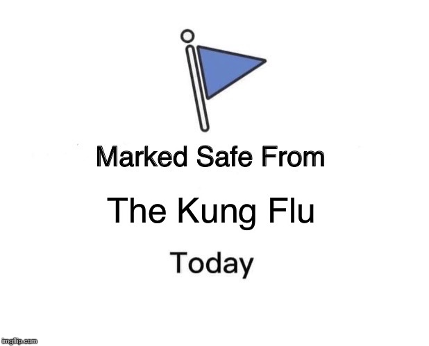 Marked Safe From Meme | The Kung Flu | image tagged in memes,marked safe from | made w/ Imgflip meme maker