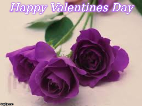 Happy Valentines Day |  Happy Valentines Day | image tagged in purple roses | made w/ Imgflip meme maker