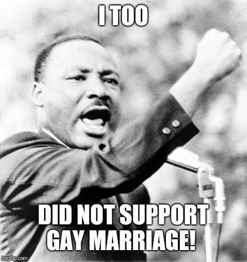 Martin Luther King Jr. | I TOO DID NOT SUPPORT GAY MARRIAGE! | image tagged in martin luther king jr | made w/ Imgflip meme maker