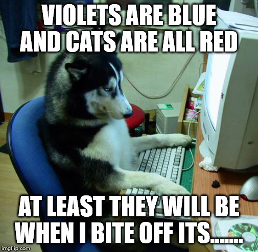 I Have No Idea What I Am Doing Meme | VIOLETS ARE BLUE AND CATS ARE ALL RED AT LEAST THEY WILL BE WHEN I BITE OFF ITS....... | image tagged in memes,i have no idea what i am doing | made w/ Imgflip meme maker
