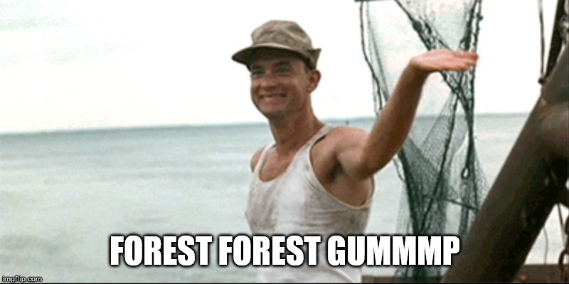 Forest Gump waving | FOREST FOREST GUMMMP | image tagged in forest gump waving | made w/ Imgflip meme maker