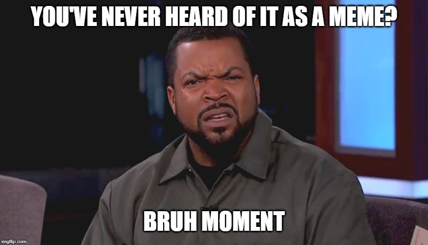 Really? Ice Cube | YOU'VE NEVER HEARD OF IT AS A MEME? BRUH MOMENT | image tagged in really ice cube | made w/ Imgflip meme maker
