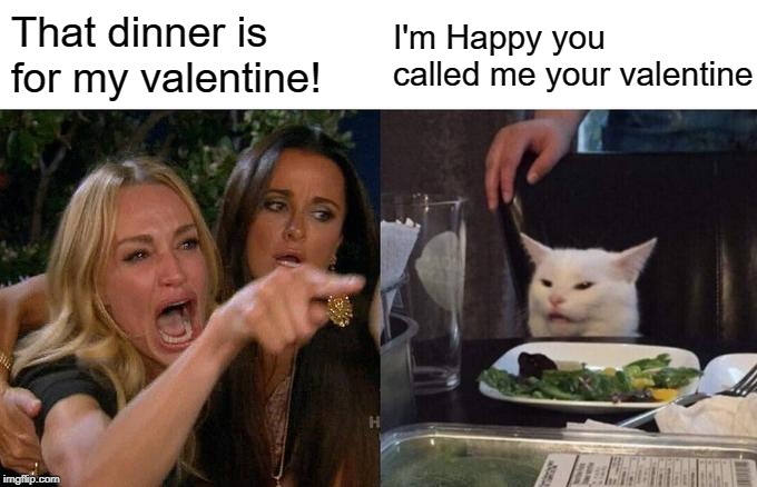 Woman Yelling At Cat Meme | That dinner is for my valentine! I'm Happy you called me your valentine | image tagged in memes,woman yelling at cat,valentines day,joke | made w/ Imgflip meme maker