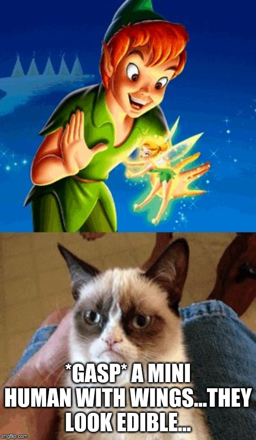 Grumpy Cat Does Not Believe | *GASP* A MINI HUMAN WITH WINGS...THEY LOOK EDIBLE... | image tagged in memes,grumpy cat does not believe,grumpy cat | made w/ Imgflip meme maker
