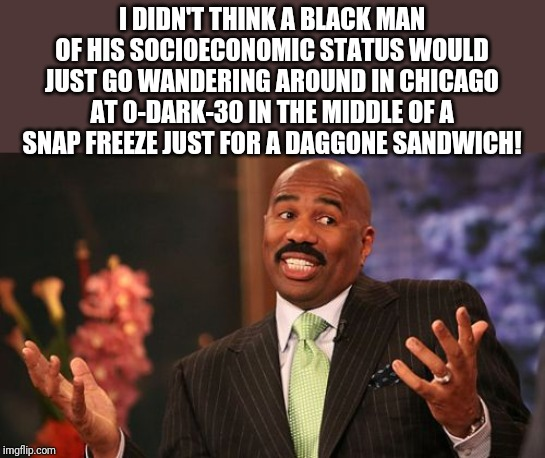 Steve Harvey Meme | I DIDN'T THINK A BLACK MAN OF HIS SOCIOECONOMIC STATUS WOULD JUST GO WANDERING AROUND IN CHICAGO AT 0-DARK-30 IN THE MIDDLE OF A SNAP FREEZE | image tagged in memes,steve harvey | made w/ Imgflip meme maker