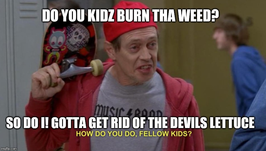 DO YOU KIDZ BURN THA WEED? SO DO I! GOTTA GET RID OF THE DEVILS LETTUCE | image tagged in how do you do fellow kids | made w/ Imgflip meme maker