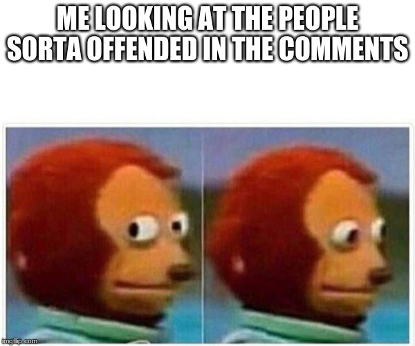 Monkey Puppet Meme | ME LOOKING AT THE PEOPLE SORTA OFFENDED IN THE COMMENTS | image tagged in monkey puppet | made w/ Imgflip meme maker