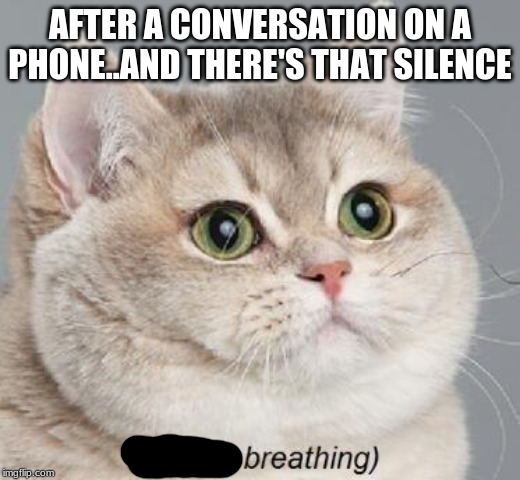 Heavy Breathing Cat Meme | AFTER A CONVERSATION ON A PHONE..AND THERE'S THAT SILENCE | image tagged in memes,heavy breathing cat | made w/ Imgflip meme maker
