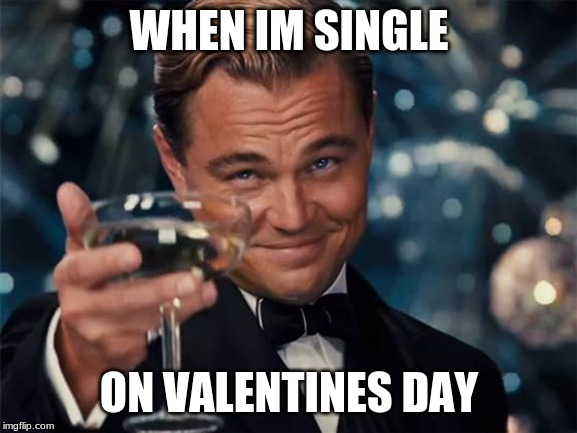 wolf of wall street |  WHEN IM SINGLE; ON VALENTINES DAY | image tagged in wolf of wall street | made w/ Imgflip meme maker