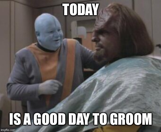 TODAY IS A GOOD DAY TO GROOM | image tagged in lieutenant worf,star trek,barber | made w/ Imgflip meme maker