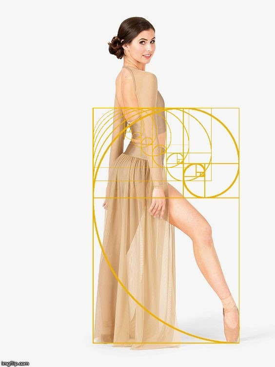 A sexy woman stretching her leg out with a Golden Ratio overlay. | image tagged in the golden ratio,the human body,sexy woman,seductive,geometry | made w/ Imgflip meme maker
