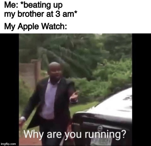 Funny bunny | Me: *beating up my brother at 3 am* My Apple Watch: | image tagged in whyareyourunning,funny memes,lol,applewatch | made w/ Imgflip meme maker