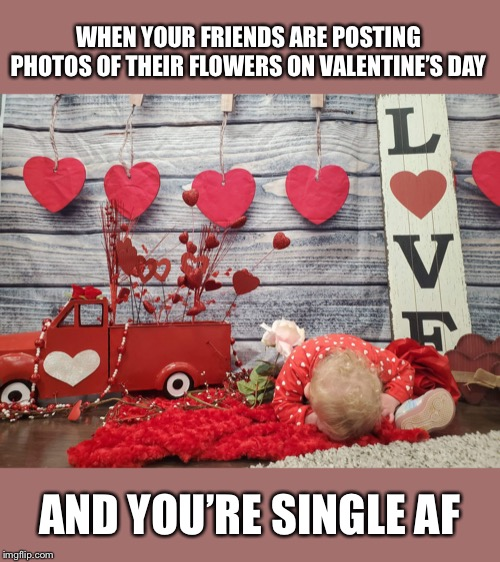 Valentine's Day fail | WHEN YOUR FRIENDS ARE POSTING PHOTOS OF THEIR FLOWERS ON VALENTINE'S DAY AND YOU'RE SINGLE AF | image tagged in valentines day fail | made w/ Imgflip meme maker
