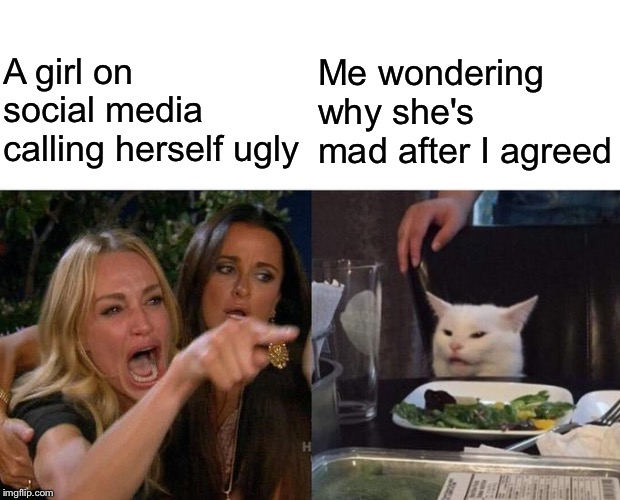 Woman Yelling At Cat Meme | A girl on social media calling herself ugly Me wondering why she's mad after I agreed | image tagged in memes,woman yelling at cat | made w/ Imgflip meme maker
