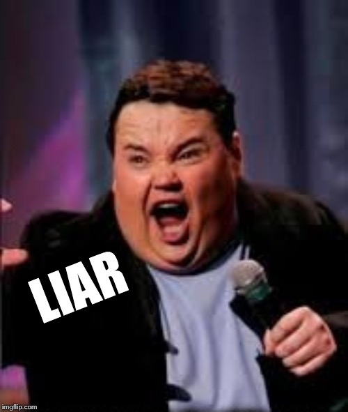 LIAR | image tagged in nay nay | made w/ Imgflip meme maker