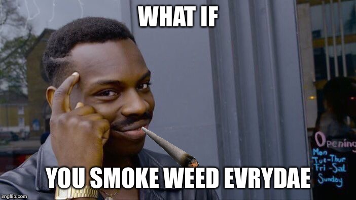 Roll Safe Think About It Meme | WHAT IF YOU SMOKE WEED EVRYDAE | image tagged in memes,roll safe think about it | made w/ Imgflip meme maker