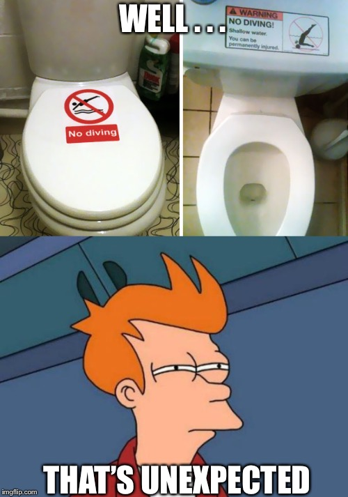 WELL . . . THAT'S UNEXPECTED | image tagged in memes,futurama fry,weird,toliet,diving | made w/ Imgflip meme maker