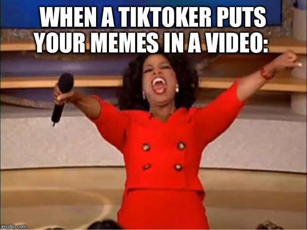 Oprah You Get A | WHEN A TIKTOKER PUTS YOUR MEMES IN A VIDEO: | image tagged in memes,oprah you get a | made w/ Imgflip meme maker