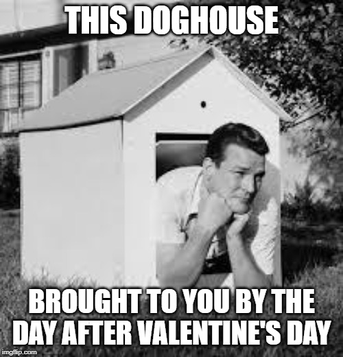 If you didn't remember about yesterday until today... |  THIS DOGHOUSE; BROUGHT TO YOU BY THE DAY AFTER VALENTINE'S DAY | image tagged in doghouse,memes,valentine's day,day after | made w/ Imgflip meme maker