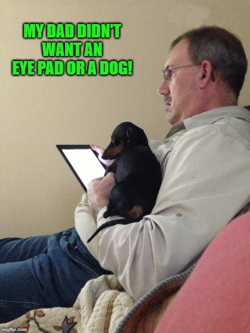 dads be like | MY DAD DIDN'T WANT AN EYE PAD OR A DOG! | image tagged in dads,dogs,kewlew | made w/ Imgflip meme maker