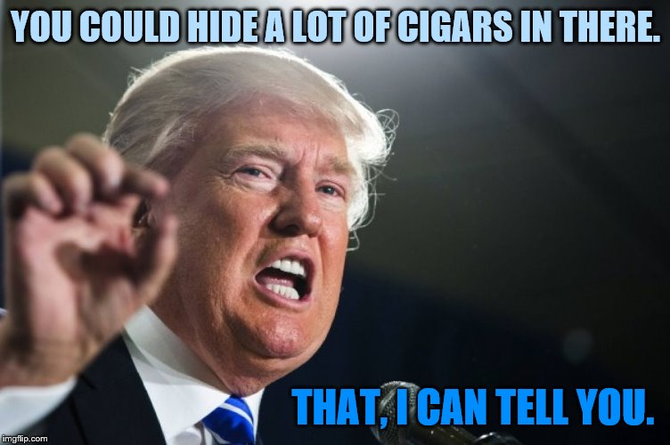 donald trump | YOU COULD HIDE A LOT OF CIGARS IN THERE. THAT, I CAN TELL YOU. | image tagged in donald trump | made w/ Imgflip meme maker