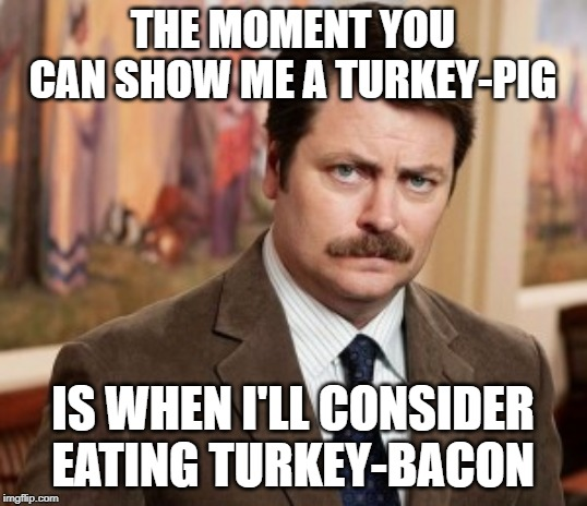 Ron Swanson |  THE MOMENT YOU CAN SHOW ME A TURKEY-PIG; IS WHEN I'LL CONSIDER EATING TURKEY-BACON | image tagged in memes,ron swanson | made w/ Imgflip meme maker