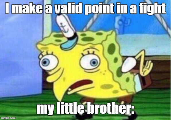 Mocking Spongebob |  I make a valid point in a fight; my little brother: | image tagged in memes,mocking spongebob | made w/ Imgflip meme maker