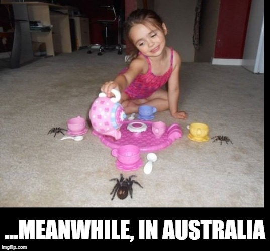 Waltzing Matilda at Tea | ...MEANWHILE, IN AUSTRALIA | image tagged in meanwhile on imgflip,tea party,meanwhile in australia,spiders,vince vance,little girl | made w/ Imgflip meme maker