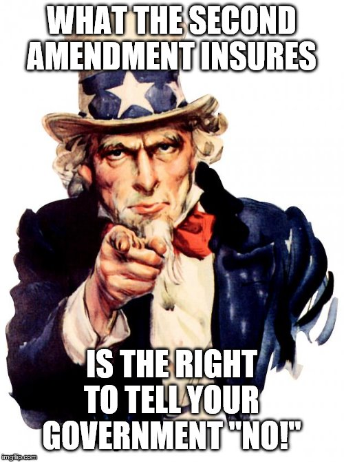 "Uncle Sam |  WHAT THE SECOND AMENDMENT INSURES; IS THE RIGHT TO TELL YOUR GOVERNMENT ""NO!"" 
