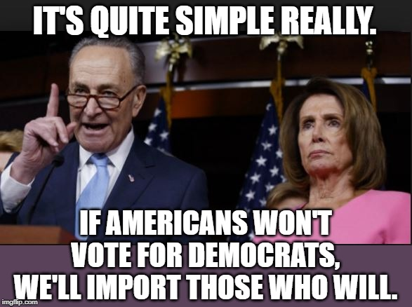 schumer pelosi shitholes | IT'S QUITE SIMPLE REALLY. IF AMERICANS WON'T VOTE FOR DEMOCRATS, WE'LL IMPORT THOSE WHO WILL. | image tagged in schumer pelosi shitholes | made w/ Imgflip meme maker