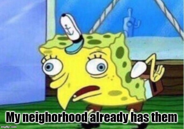 Mocking Spongebob Meme | My neighorhood already has them | image tagged in memes,mocking spongebob | made w/ Imgflip meme maker