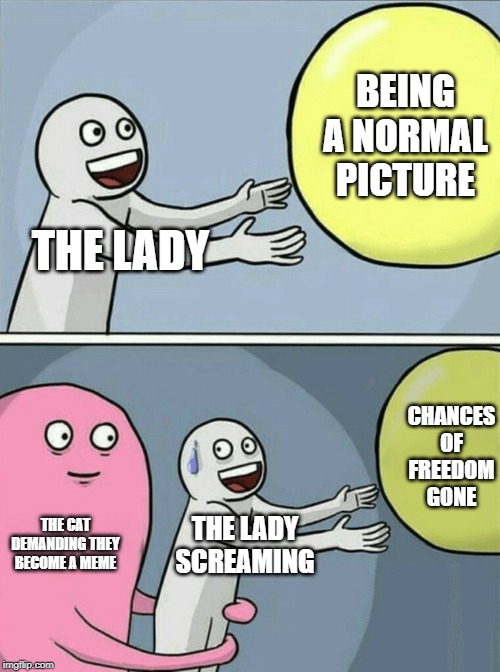 Great, now they are invading other memes. | THE LADY BEING A NORMAL PICTURE THE CAT DEMANDING THEY BECOME A MEME THE LADY SCREAMING CHANCES OF FREEDOM GONE | image tagged in memes,running away balloon,woman yelling at cat | made w/ Imgflip meme maker