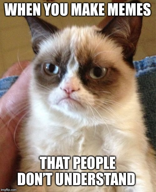 Grumpy Cat Meme | WHEN YOU MAKE MEMES THAT PEOPLE DON'T UNDERSTAND | image tagged in memes,grumpy cat | made w/ Imgflip meme maker