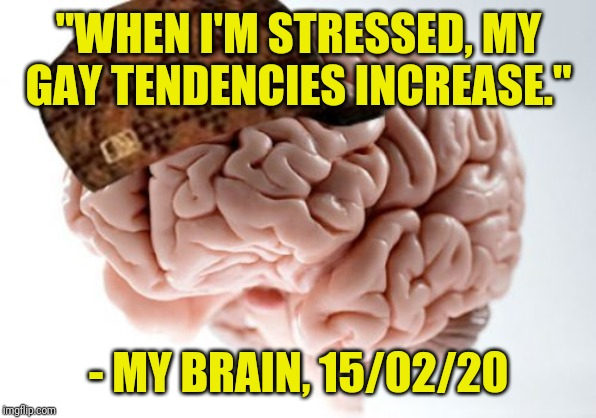"Or it said something similar to that | ""WHEN I'M STRESSED, MY GAY TENDENCIES INCREASE."" - MY BRAIN, 15/02/20 
