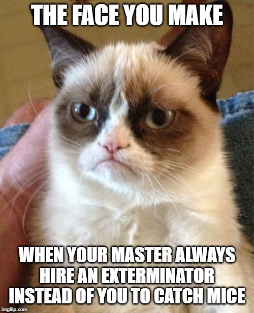Grumpy Cat | THE FACE YOU MAKE WHEN YOUR MASTER ALWAYS HIRE AN EXTERMINATOR INSTEAD OF YOU TO CATCH MICE | image tagged in memes,grumpy cat | made w/ Imgflip meme maker