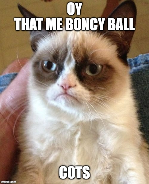 Grumpy Cat | OYTHAT ME BONCY BALL COTS | image tagged in memes,grumpy cat | made w/ Imgflip meme maker